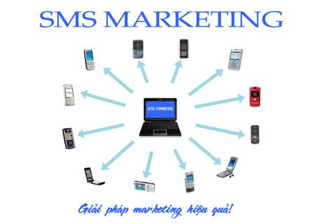 Bạn học được gì từ SMS Marketing ?